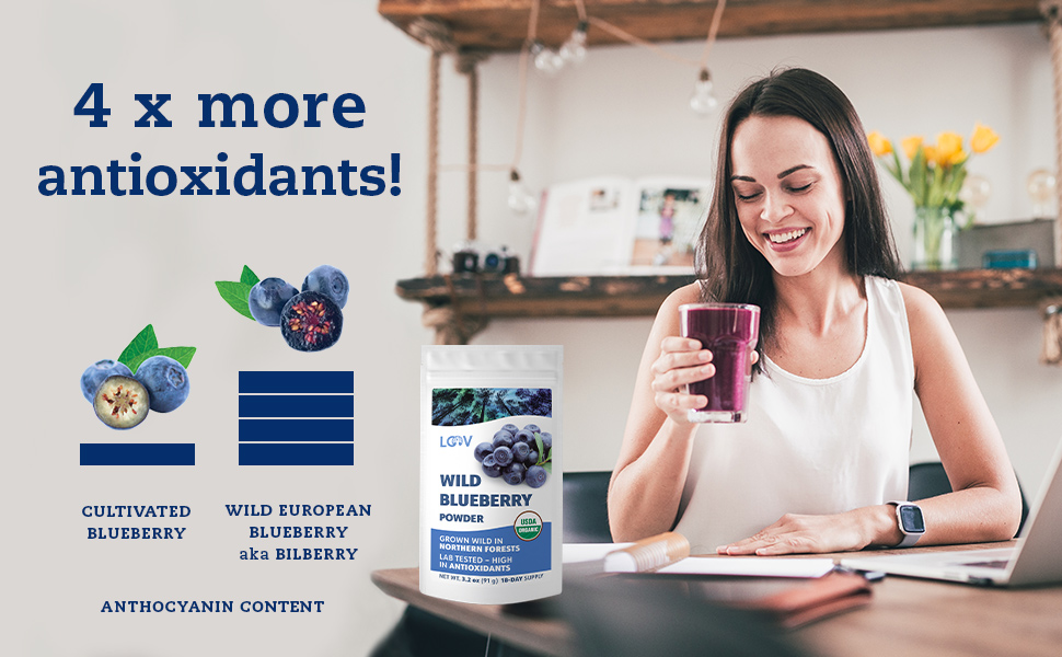 LOOV freeze-dried wild blueberry powder: 4 x more antioxidants than in cultivated berries