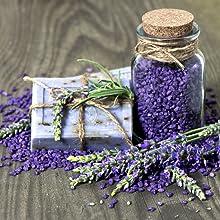 lavender, essential oils