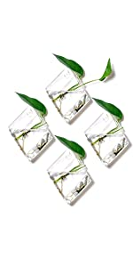 4 Pack Wall Plant Terrariums Glass Hanging Planter Diamond Air Plants Holder Indoor Home Office