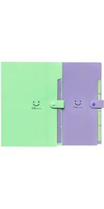 绿紫文件夹