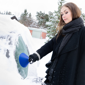 snow cleaner tool