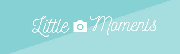 little moments baby products baby milestone stickers baby monthly stickers baby products milestone