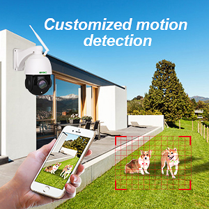 Customized motion detection