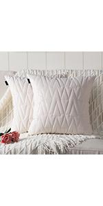 Mandioo Pack of 2  Luxury Modern Velvet Solid Decorative