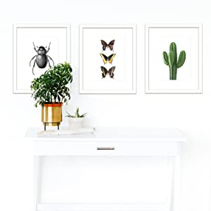 Wall Art Prints - Unframed HD Printed Modern Picture Poster Decorations for Home Decor