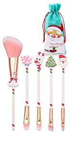 Christmas Professional Makeup Brushes