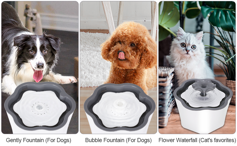 Pet water fountain for dogs and cats
