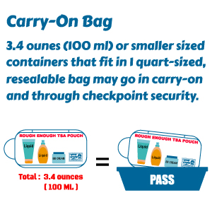 standard size for containers fit in quart sized resealable carry on bag through checkpoint security