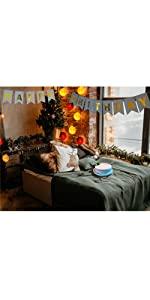 birthday banner string lighting silver gold glitter hanging
