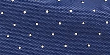 Classic Polka Dot Design