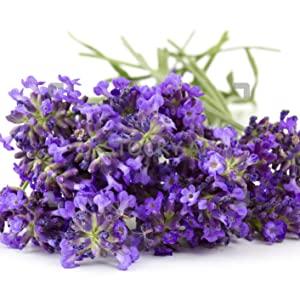 Lavender aromatherapy sleep better essential oils nasal inhaler sleep aid relax calm soothing rest