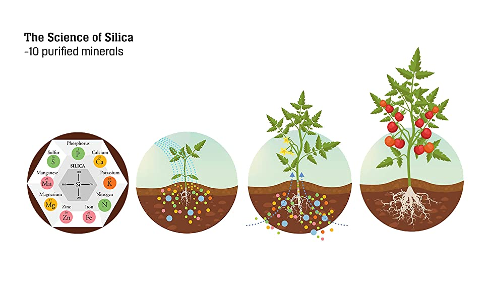 science of silica