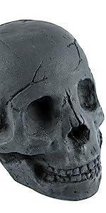 Myard fire skull log 2