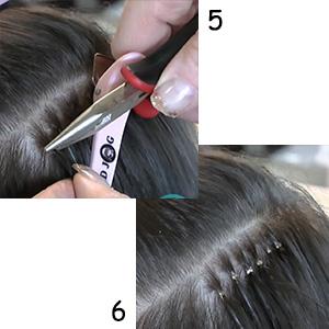 Step 5-6:
