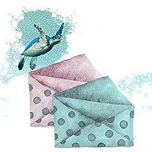turtle envelope