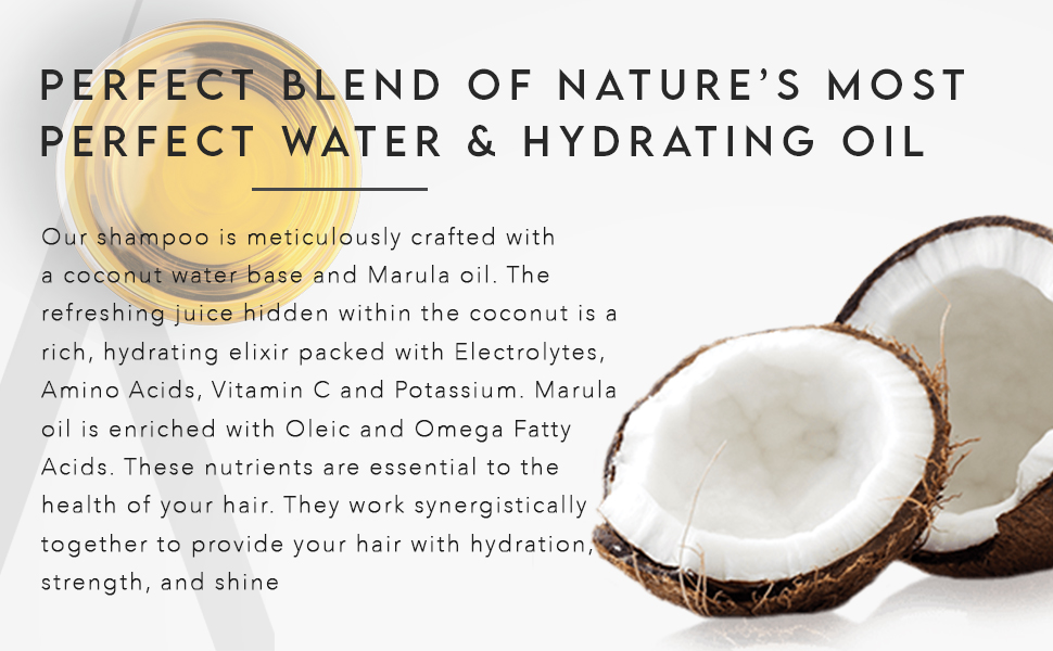 Coconut Water Based Daily Shampoo for Men & Women