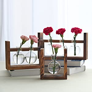 plant planter stand vase glass propagation for water tubes test bamboo tube wooden hanging wall