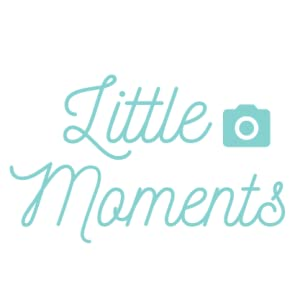 little moments baby products baby milestone stickers monthly milestone stickers baby products