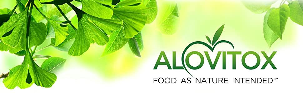 Ginkgo biloba powder extract organic natural non gmo memory focus health supplement