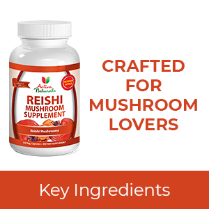 reishi mushroom supplements