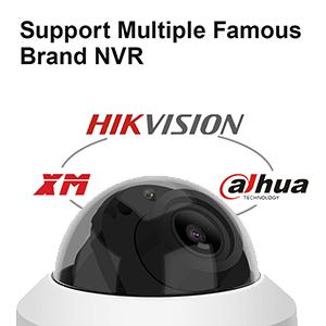 suport multiple NVR