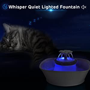 Automatic cat fountain led light