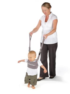 learning crawling harness leash