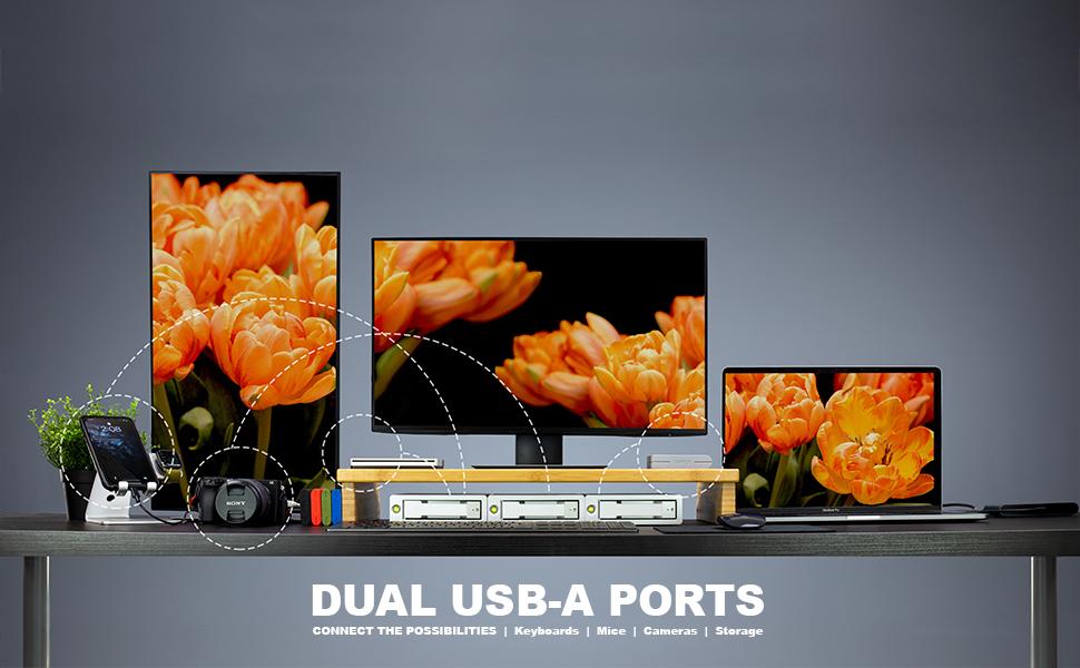 AV Pro 2 Dual USB Ports