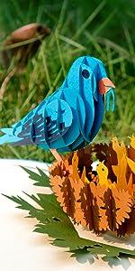 Bluebird Pop Up Card