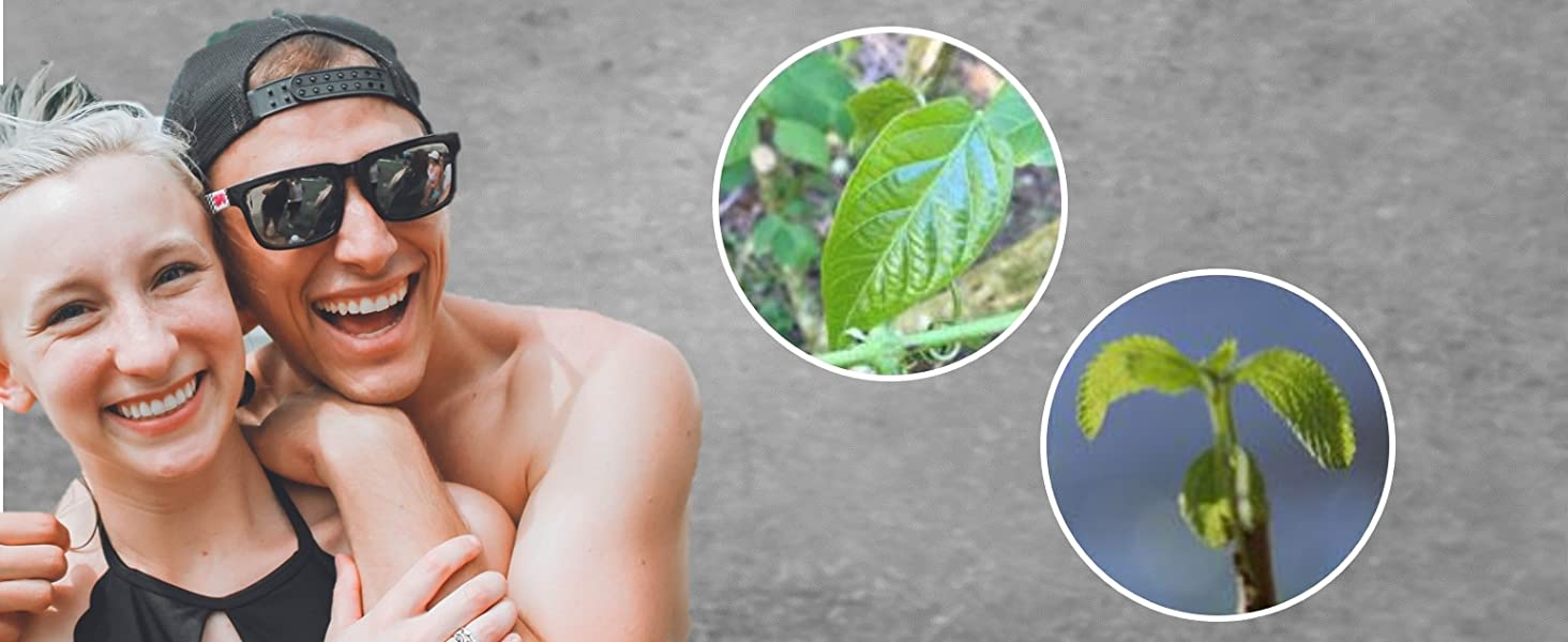 Natural Skincare Gift Plant-based ingredients