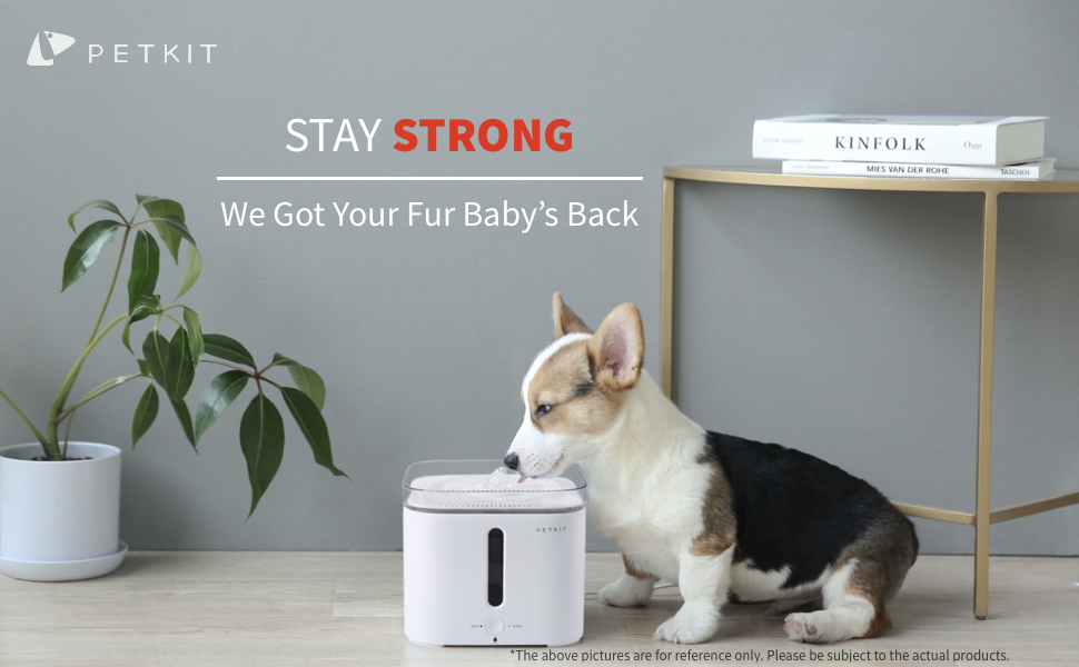 petkit dog water fountain pet water drinking fountain cat water dispenser