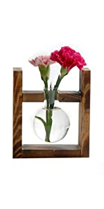 Bulb Vase with Retro Solid Wooden Stand Small Bench Frame for Hydroponic Plant Family Garden Wedding