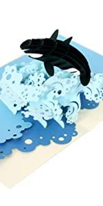 Orca Whale Pop Up Card