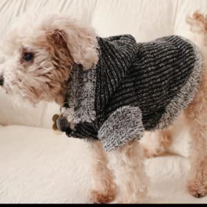 dog fleece sweater  dachshund sweater  extra small dog sweater  dog christmas clothes  pet sweater