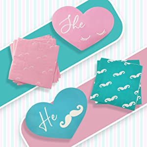 baby reveal party baby gender reveal plates gender reveal products gender reveal party supplies