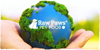 flea cats treatment skin dog treats anti itch for dogs anti rash cream dogs paw paw oil pet odor
