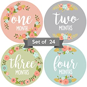baby milestone stickers baby monthly stickers floral pink blue for girls baby girl milestone sticker