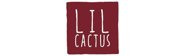 Lil Cactus Smocking and Rompers Affordable Children's Clothing for Girls and Boys