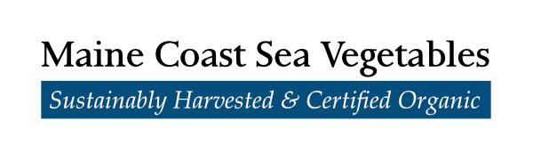 MCSV Logo