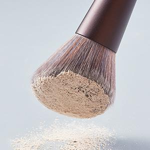 makeup brush 5