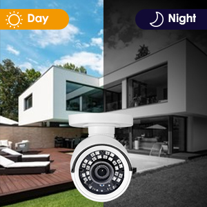 Day and Night Vision