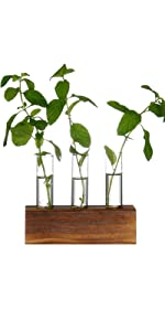 Wooden Stand Flower Vase Pots Propagation Station for Hydroponic Plants Home Garden Decoration