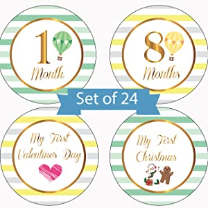 baby milestone stickers month stickers baby milestone cards monthly stickers boy baby month