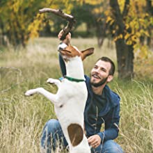 jumping dog with man stick outdoors