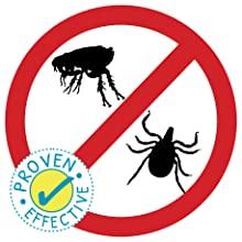 proven effective ticks fleas