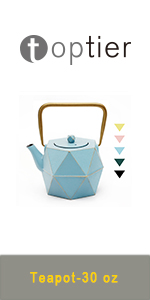 cast iron tea kettle tea pot with infuser for loose tea Japanese teapot cast iron kettle stove top