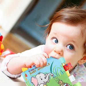 Baby cloth books