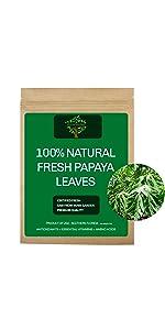 Fresh Papaya Leaves, Fresh Papaya Tea