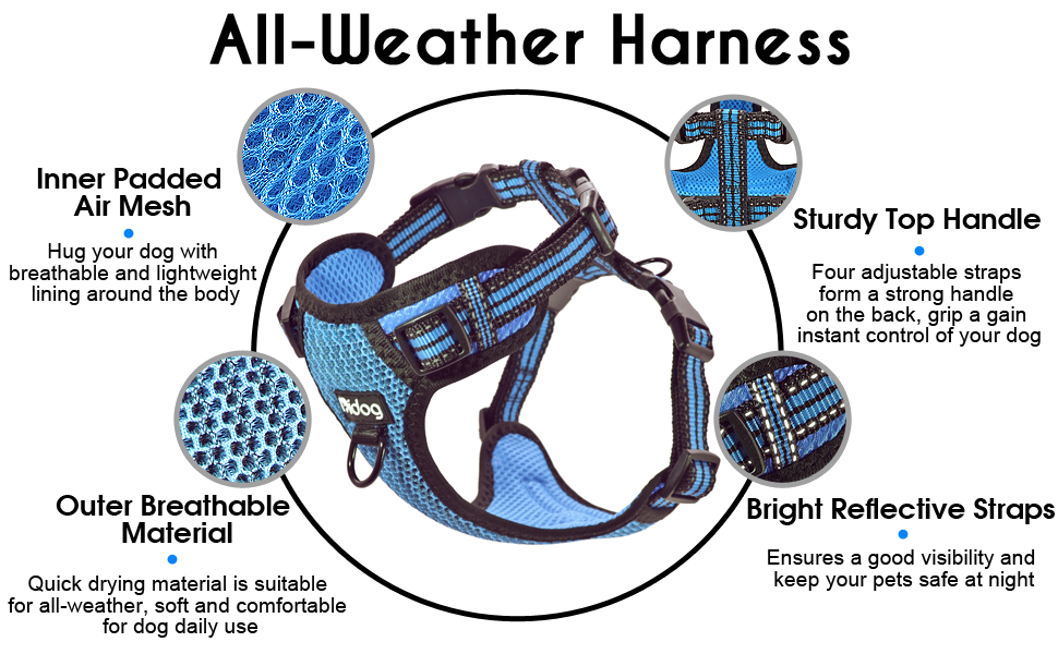 ALL WEATHER HARNESS
