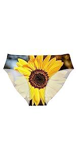 sunflower underwear